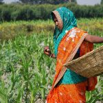 The key to India's prosperity is Agriculture