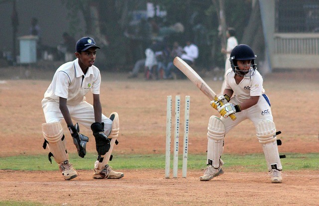 cricket national game